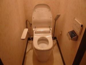 トイレ1完成